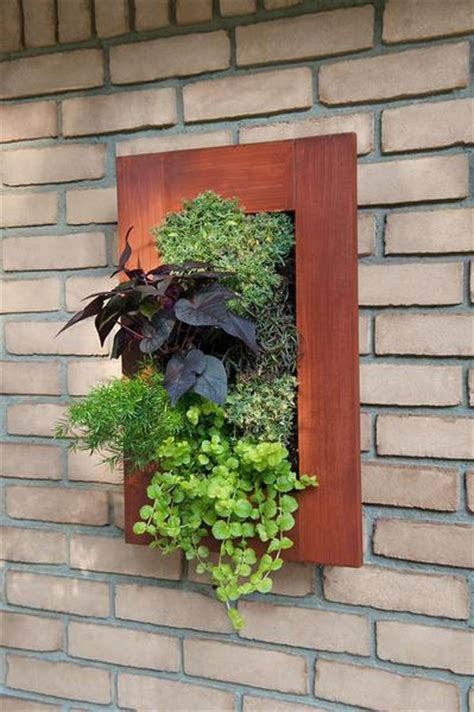 rustic framed grovert living wall kits urban zeal planters
