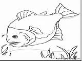 Fishing Coloring Rod Pages Fly Getcolorings Printable Reel sketch template