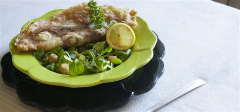 recette cuisine viande recette brick viande hachée cuisine du maghreb