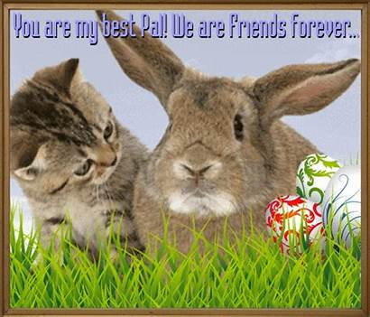 Pal Easter Card Friend Friends Send Cards