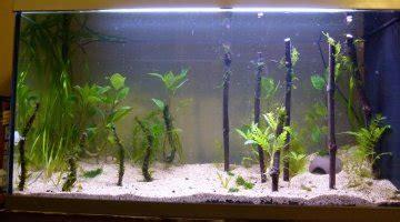 filtration bassin ext 233 rieur