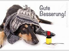 Doppelkarte Grußkarte Genesungskarte kranker Hund mit