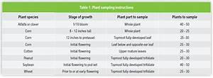 Agronomy Notes  Plant Tissue Testing For Boron