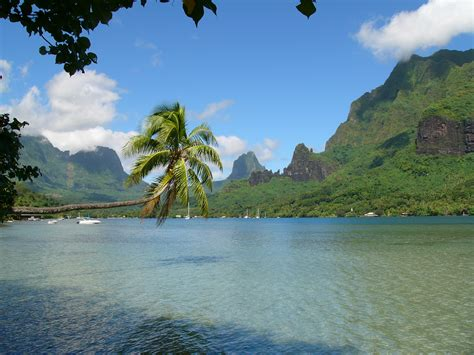 35 Fantastic Photos Of Moorea Boomsbeat