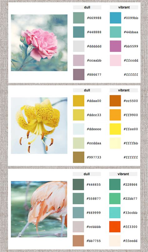 color pallete generator january 2012 design sensibility page 2
