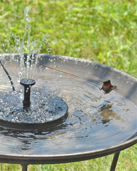 hummingbird bird bath fountains miniature bird bath