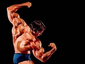 The Wallpapers: Arnold Schwarzenegger
