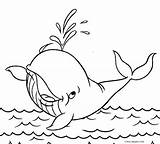 Coloring Whale Pages Print Orca Sperm Printable Drawing Jumping Cool2bkids Getcolorings Getdrawings sketch template