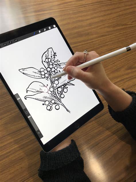 ipad pro digital drawing workshop   adelaide