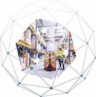 Warehouse Chain Supply Distribution Software Transportation Optimization