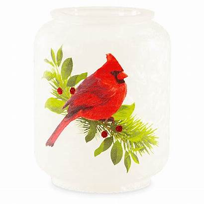 Scentsy Christmas Cardinal Warmer Candle Warmers Holiday