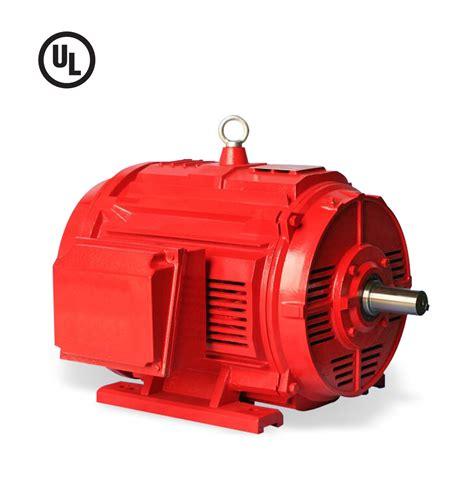 Certified Electric Motor