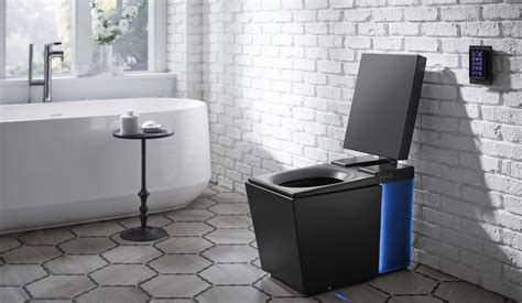 smart toilet  play   flush
