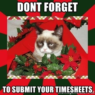 Christmas Meme Generator - dont forget to submit your timesheets grumpy cat on christmas meme generator
