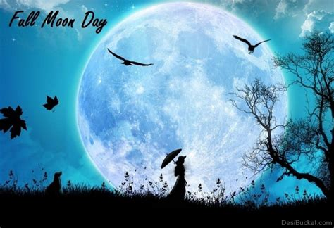 Full Moon Day Pictures, Images, Photos