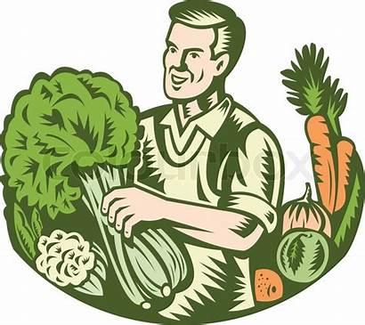 Farmer Organic Illustration Vector Farm Vegetables Harvest