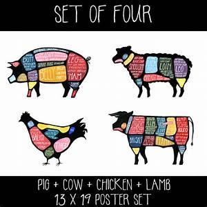 Set Of Four Meat Butchery Diagrams