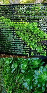 hangende beete sichtschutz balkon pinterest With französischer balkon mit hängende gärten für zuhause