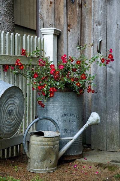 Galvanized Garden Decor Popular The Gardening Cook
