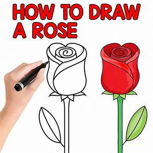 How to Draw a Rose - Easy Step by Step For Beginners and ...