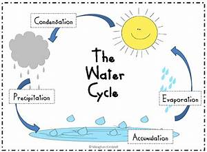 Water Cycle Diagram For Preschool