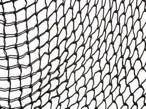 10 Cast Net: A Fishing Net