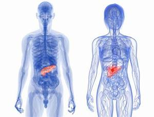 Chronic Pancreatitis  Symptoms  Causes And Treatments
