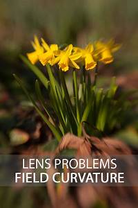 Lens Problems  U2013 Field Curvature