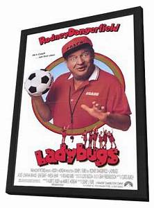 Ladybugs Movie Posters From Movie Poster Shop