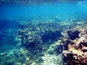 Undersea Rocks