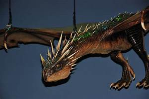 Top Harry Potter Hungarian Horntail Dragon Images for ...