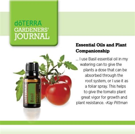 essential gardeners essential oils can be valuable tools for every gardener whether you are trying to chase away