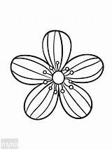 Coloring Adult Flowers Simple Flower Pages Books Drawing Getdrawings Cool Myria Different sketch template