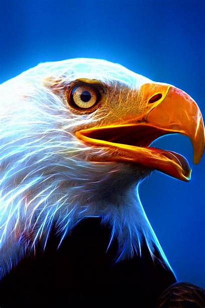 Ultra Eagle Wallpapers Mobile Phone Style2 Bird