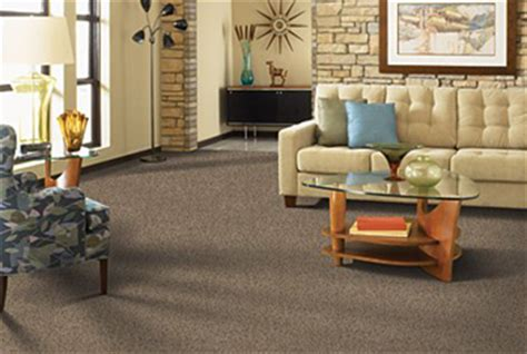 brown carpet living room ideas carpet store sterling installation showroom virginia va