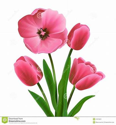 Tulip Flower Bouquet Realistic Rosa Blossoming Flowers