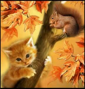 Funny Autumn Kitten