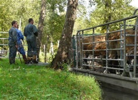 chambre d agriculture des deux sevres soutien à l 39 élevage le parc et les chambres d