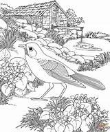 Coloring Pages Garden Flower Landscape Oak sketch template