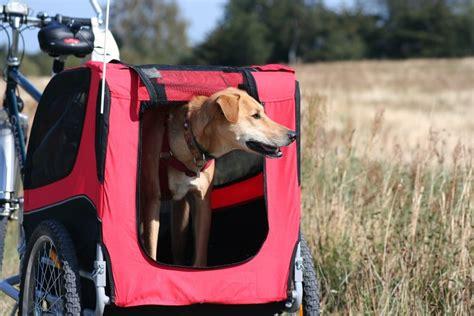 wie wird der hunde fahrradanhaenger  fahrrad befestigt