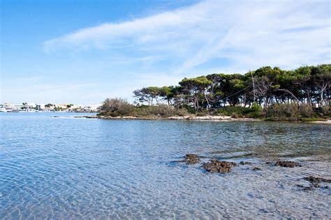 Isola Dei Conigli Porto Cesareo by Isola Dei Conigli E La Spiaggia Dell Isola Grande Visita