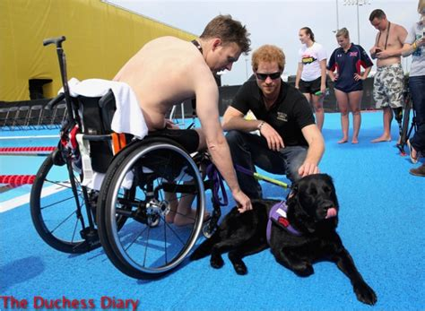 Prince Harry Cheers On Service  Ee  Dogs Ee   At Invictus Games Universe Swoons Thess Diary
