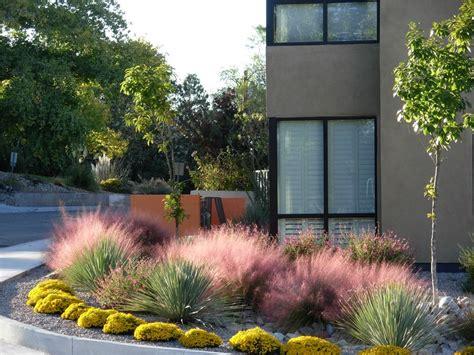 southwest garden design landscaping network