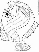 Hatchet Coloring Fish Pages Drawing Hatchetfish Template Clipart Stories Fishes Coloringpages101 Getdrawings Sketch Icp Printables sketch template