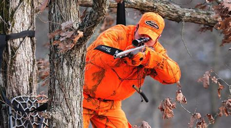 can deer see blaze orange deer guides can these animals see orange vests