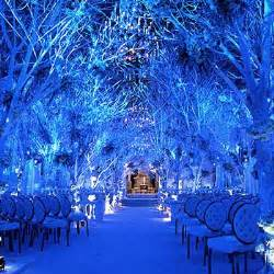 winter wedding decoration best pictures robs viva