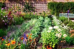 Mischkultur Im Garten : mischkultur welche pflanzen passen zusammen plantura ~ Watch28wear.com Haus und Dekorationen