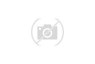 New Zealand White Island Volcano
