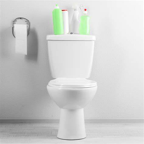 make your own toilet bowl cleaner diy earth news