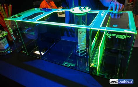 we can t get enough of synergy reef s fluorescent acrylic sumps gear nano aquarium nanobox